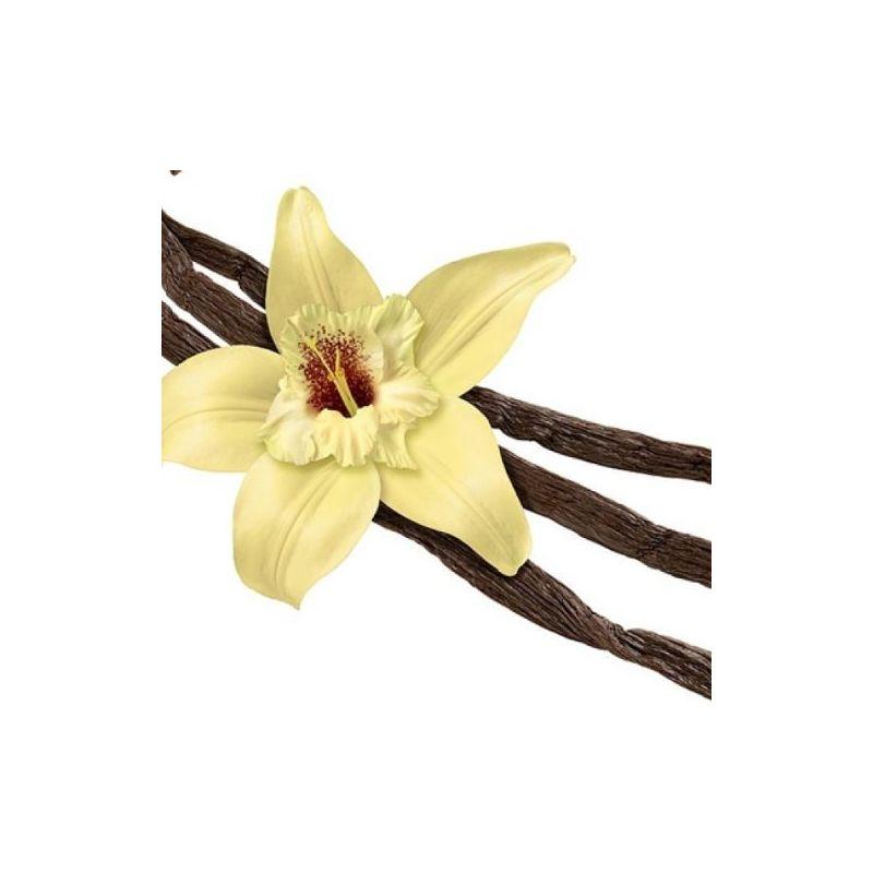 svapocafe-Vanillin 10% PG 10ml TPA-Aromi Essenze